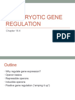 prokaryotic gene regulation notes
