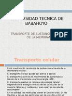 Transporte Celular Activo Pasivo
