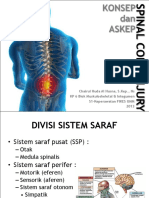 Spinal Cord Injury Path Jpeg Rev2
