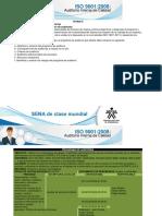 Planificacion y Preparacion de Auditorias Internas