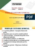 Peritaje Contable Judicial - Semana 01