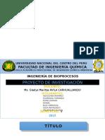 expo piña