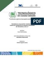 Tesis Profesional Andres Eugenio Juarez