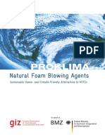 Natural Foam Blowing Agents