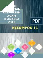 Profil Kesehatan Kabupaten Agam (Padang) 2010