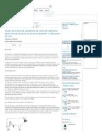 Ajuste de La Técnica Operatoria Del Corte Del Ligamento Apical Dorsal Del Pene en Toros Receladores o Detectores de Celo - Engormix