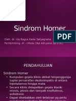 Sindrom Horner Satya