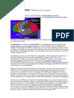 Neuroplasticity Wikipedia