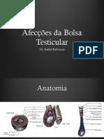 Afeccoes-da-bolsa-testicular-web.pdf