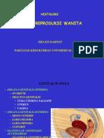 Organ Genital Wanita