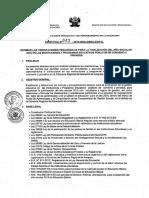 DIRECTIVA 0043-2015.pdf
