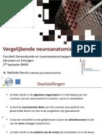 HC Vergelijkende Neuroanatomie.pdf