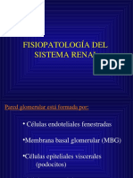 Fisiopatología Renal