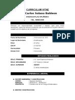 Curriculum Vitae Capintero y Sanitario 2015