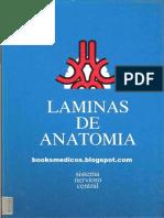 LAMINAS_SNC