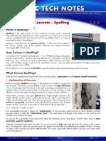 Concrete - Spalling (DULUX)