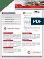 Boletín 'Conectamef Al Día'Diciembre 2015 - Puno1