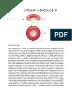 Pembentukan Hemoglobin