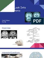 a closer look into schizophrenia  1