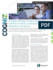 Strategic Intraday Liquidity Monitoring Solution for Banks