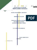 -Proceso-de-Insuficiencia-Renal.docx