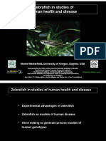 Zebrafish in studies of human health and disease (Monte Westerfield)