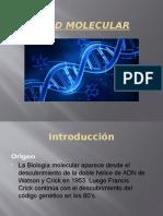 Edad-molecular FINAL.pptx