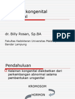 (Dr. Billy) Kelainan Kongenital Urogenital