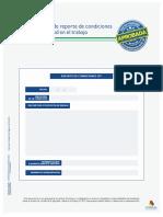 ANEXO 5. Modelo de Reporte de Condiciones de SST