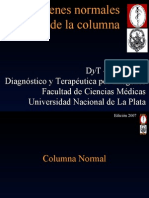 _Imagenes Columna Normal