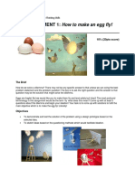 how to fly an egg