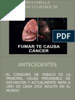 Ley de Regulacion y Control Del Tabaco Instituciones P__blicas