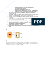 Biology IGCSE Guide