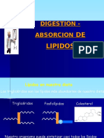 CLASE 7  . DIGESTION- ABSORCION D ELIPIDOS.ppt