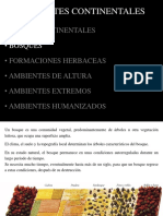 04 - Ambientes Continentales 2-1