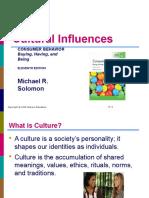 Topic 5 - Culture