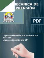 biomecanicadelaprension-130807200928-phpapp01