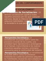 23B2Y24ases SocialeASET24Ts Fundamentos !!