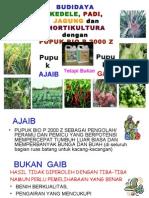 Budidaya Menggunakan Bio P 2000 Z