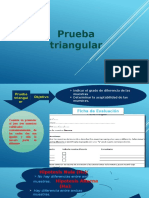 Prueba Triangular Exposicion