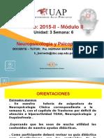Semana 6 Neuropsicologia y Psicopatologia
