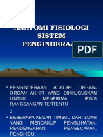 Anatomi dan Fisiologi Sistem Indera