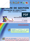 Informe Ejecutivo Fondo Indigena. Gestion 2012