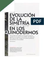 Simetria de Los Equinodermos Samuel Zamora