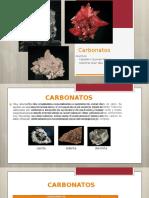 Exposición de Carbonatos 3