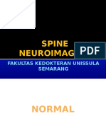 Spine Neuroimaging