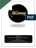 Reviso Pcdf 2015 Lcio Valente