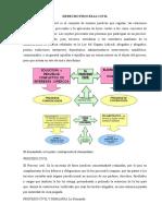 Idea Del Derecho Civil y Procesal Civil