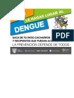Trabajo Dengue