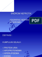 SNDROM_NEFROTIK